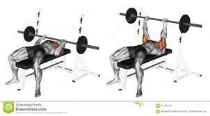 exercising close grip barbell bench press stock illustration