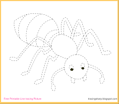 free tracing line printable ant tracing picture