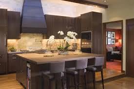 kitchen cabinet finish repair kitchen cabinet ideas