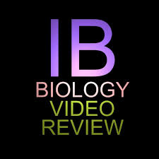 design lab ib biology exle stephanie castle youtube