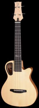 prise 駘ectrique cuisine amistarleewald resophonic tenor ukulele https