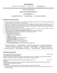 Executive Resume Template by Best 25 Executive Resume Template Ideas On Creative