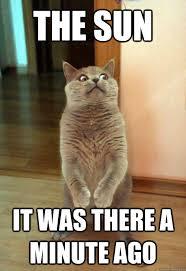 Sun Memes - the sun it was there a minute ago cat meme cat planet cat planet