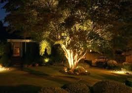 Landscape Lighting Uk Tree Landscaping Lights Landscape Lighting Garden Tree