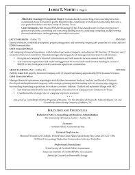 Great Resume Summary Consultant Resume Sample Berathen Com