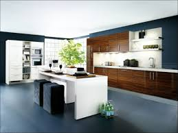 kitchen modern kitchen looks modern kitchen ideas new kitchen