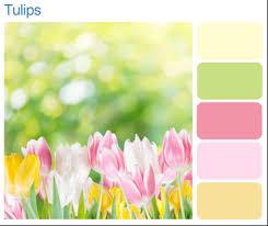 zen color palette good colors make good space inquirer lifestyle
