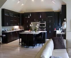 Light Wood Kitchen Cabinets Dark Kitchen Cabinets And Light Wood Floors U2013 Quicua Com