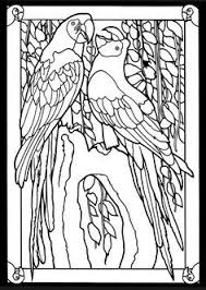 parrots coloring pages click to see printable version of two african grey parrots