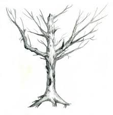 drawing of a dead tree drawing art library
