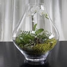 decor glass terrarium greenwich ct