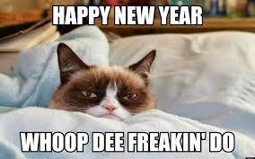 Happy New Year Cat Meme - the art of random willy nillyness happy new year