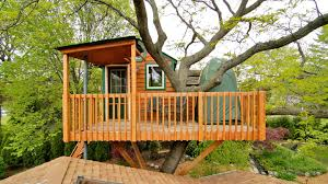 luxury treehouse prompts schaumburg officials to seek regulations