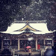 Snow Falls In Tokyo For The First Time In November Since 1962 2055 best japon asia images on pinterest castles cute photos
