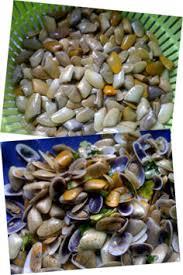 cuisiner des tellines ma recette de tellines jemesensbien fr
