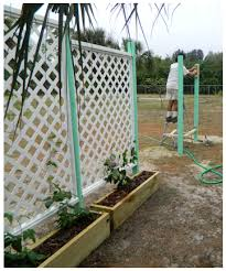 Pvc Pipe Trellis Buy Or Make A Very Large Trellis Grown Vines Veggies Garden