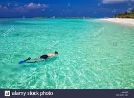 holiday resort in moorea stock photos u0026 holiday resort in moorea