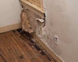 Hardwood Floor Water Damage Addressing Water Damaged Floors Hardwood Floors Magazine