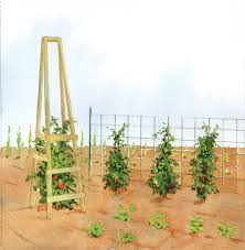 the best homemade tomato cages organic gardening tomato cage