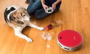 Best Pet Vaccum Top 12 Best Pet Vacuum Cleaners November 2017 Vacuumseek