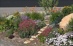 What Is A Rock Garden High Altitude Gardening Blooming Perennials