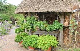 old fashioned garden shed in the fruit and vegetable garden at