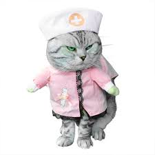 small dog clothes for boy cat dog nurse costume with hat