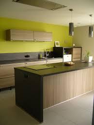cuisine verte et marron cuisine verte et marron avec decoration de cuisine vert anis idees