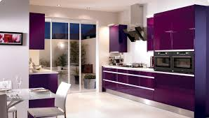 interior kitchen colors eggplant purple kitchen cabinets stainless steel modern