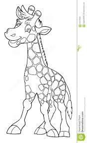 cartoon animal giraffe caricature coloring page stock