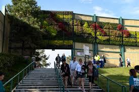 the secret behind the floral mural of fiddler u0027s green u0027s living
