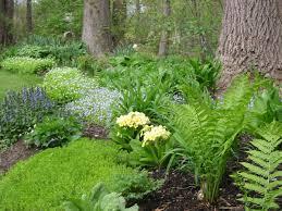 daniela u0027s garden in spring 12 photos fine gardening