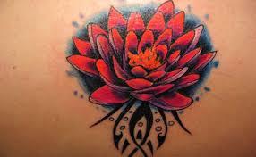 5 fantastic lily tattoo designs style presso