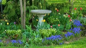 gardening tips how to plan your spring garden new house new home