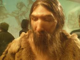 neanderthals overview and study guide