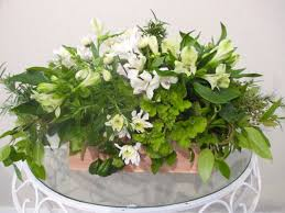 Fig Flower - flowers fig leaf florists hamilton florists in hamilton