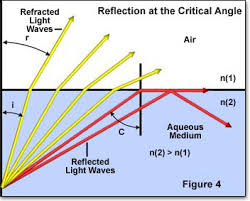 Light Is Not Refracted When It Is Molecular Expressions Science Optics And You Light And Color