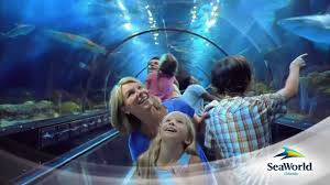 busch gardens family vacation packages bush garden va busch gardens williamsburg tickets discounts on