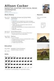 Event Coordinator Resume Sample by Social Media Coordinator Resume Samples Visualcv Resume Samples