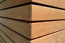 rivestimento in legno pareti larice siberiano netto nodi rivestimenti in legno per pareti