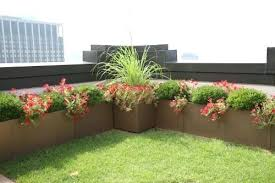 roof garden plants roof garden plants in tamilnadu a done right 5 plaza projects
