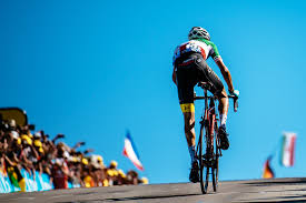 share the damn road cycling jersey bicycling pinterest road tour de france 2017