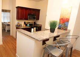 1 Bedroom Apartment For Rent In Brooklyn Downtown Richmond Lofts