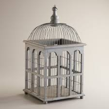 gray antique birdcage decor antiques cats and bird cages