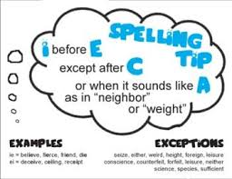 13 best spelling images on pinterest spelling activities