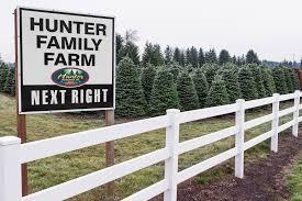 neighborhood notes fresh cut for christmas thurston county