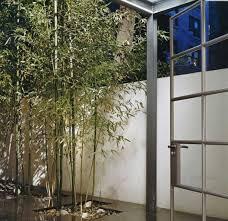 Urban Garden Room - terrace u0026 garden awesome city garden design with bamboo green