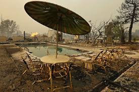 California Wildfires Pets by Wildfires Rage Through California Wine Country Photos Abc News