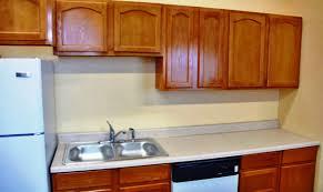 kitchen flat panel kitchen cabinet doors woks stirfry pans