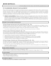manager resumes sample it manager resumes entry level it project